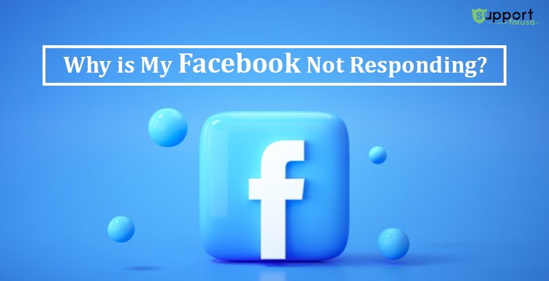 Why Is My Facebook Not Responding and How to Fix It?